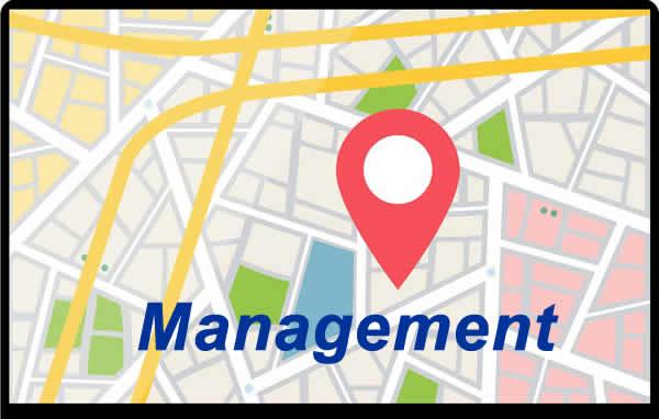 Google GMB Management