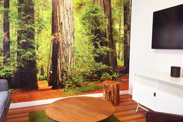 Custom Wall Murals Office Home Retail - Printed