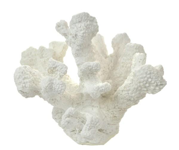 White Poly Tube Coral