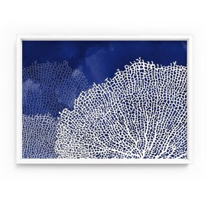 Coral Sea Fan Print