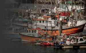 Commercial fishing equipment