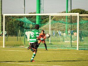 Football goal nets, perimeter netting