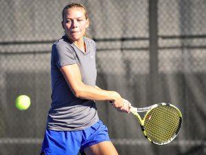 tennis court netting