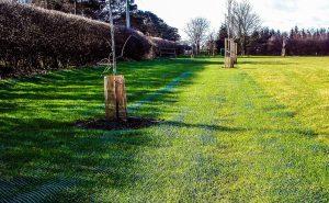 Grass ground reinforcement mesh