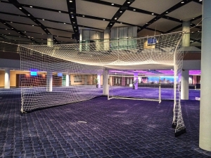 Wembley conference penalty net