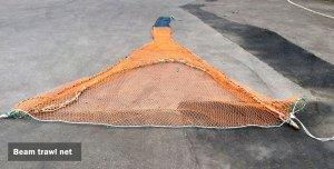Beam trawl net