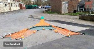 Sole trawl net