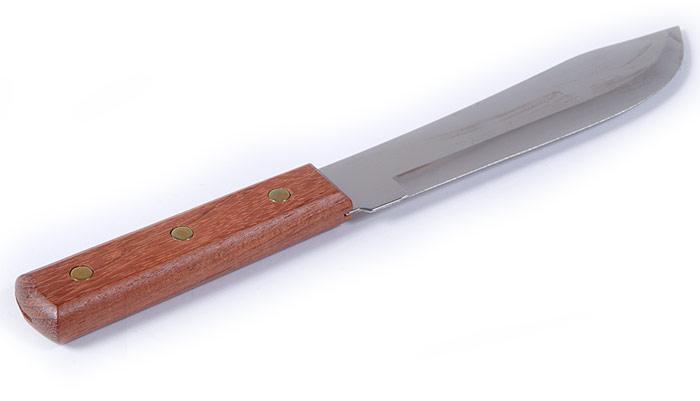 "10"" Bait Knife"