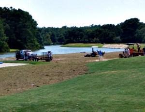 Golf sprigging_on_Hole_#17