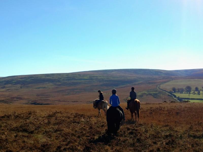 Lynmouth Lynton Horse Riding