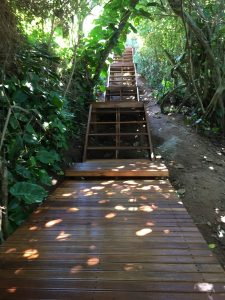 Timber Staircase with Walkway leading to Beach Access
