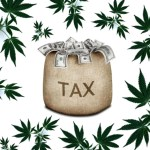 Commercial Cannabis Tax Measure Presentation