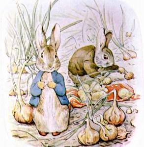 Bedtime Stories ~ The Tale of Benjamin Bunny