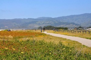 Community Invited to Participate in Poplar Beach Gateways Plan @ Poplar Beach Parking Lot | Half Moon Bay | California | United States