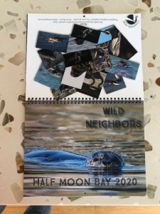 Clive Beavis Wildlife Calendar Signing at Inkspell; Proceeds to Coastside Hope @ Inkspell Books | Half Moon Bay | California | United States