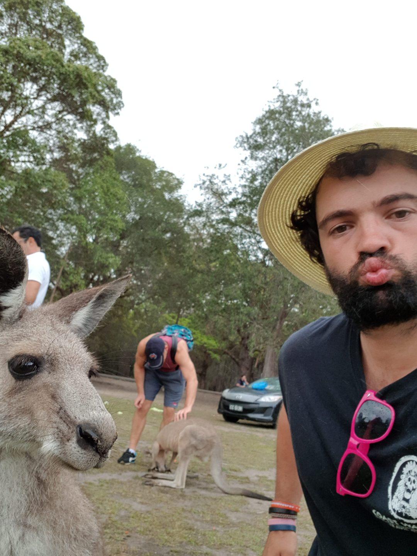 Hunter Valley Day Trip from Sydney kangaroo selfie