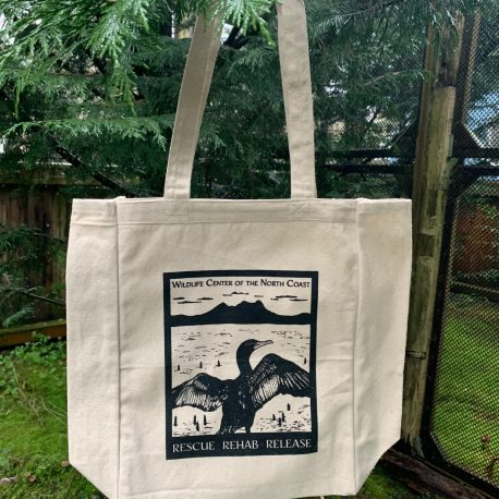 Cormie Tote - $20
