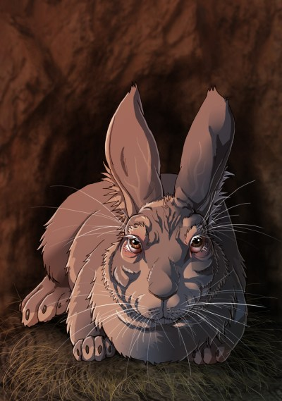 The Chief Rabbit, by fiszike