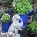 5 Ideas for Creating a Colorful Backyard Garden