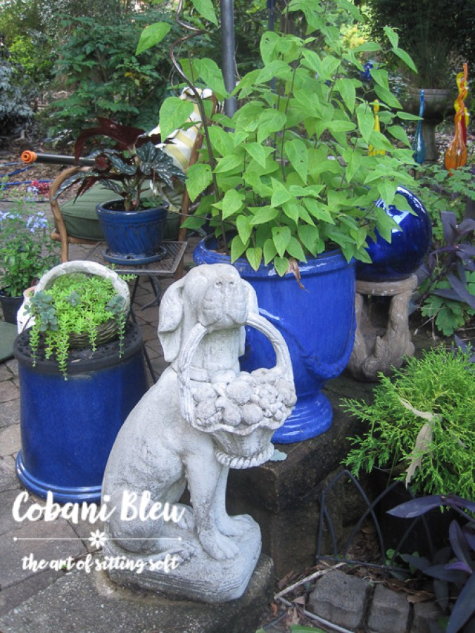How to Create a Cohesive Backyard | CobaniBleu | www.cobanibleu.com