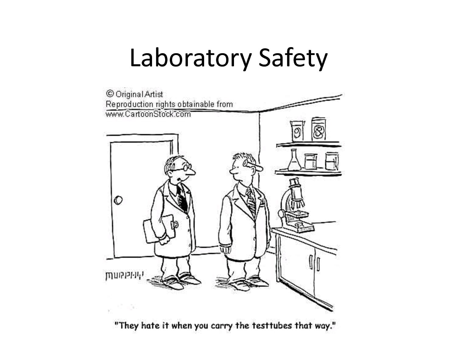 Lab Safety Cartoon Worksheet