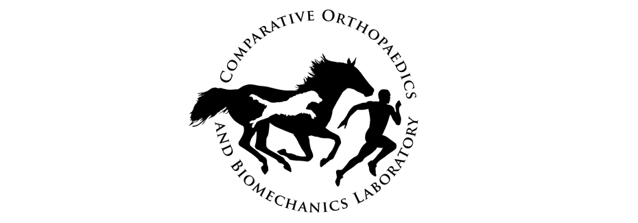 UF Comparative Orthopaedics Biomechanics Laboratory