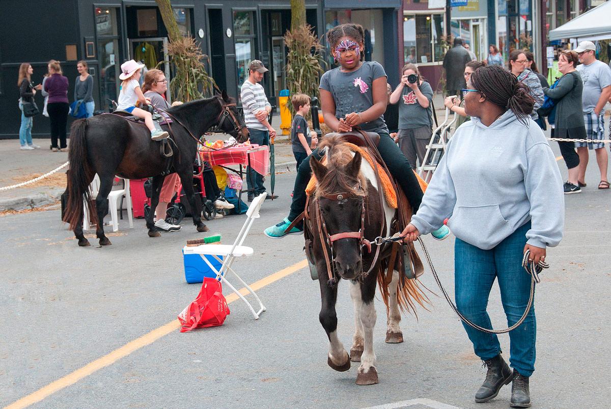 Harvest Festival 2017 - Pony Rides