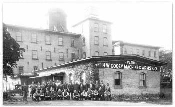 Cooey Plant