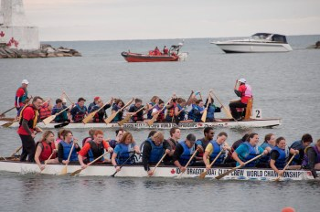 Dragon Boats in Cobourg West Harbour in 2011
