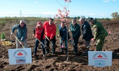 Tree Planting Oct 2018