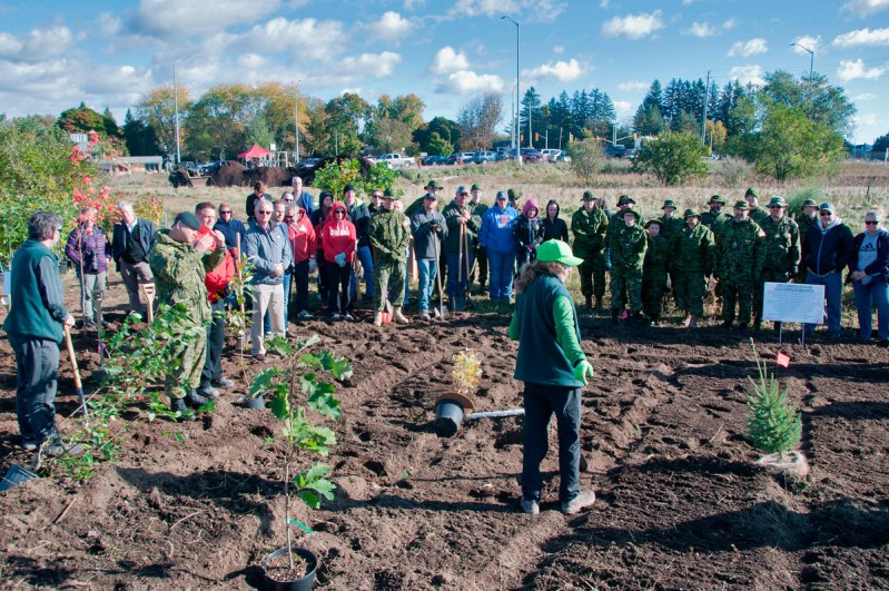 Tree Planting Oct 2018 - Instruction to volunteers