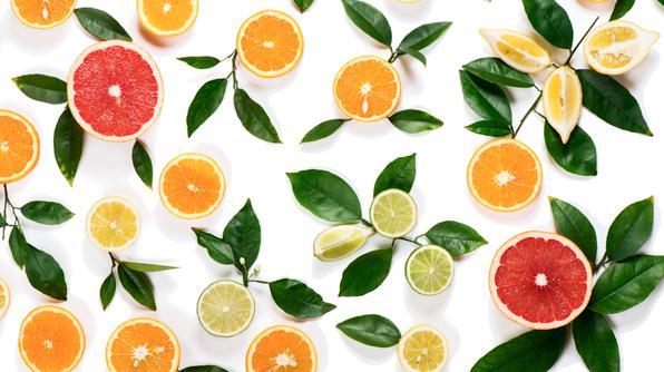 Resultado de imagen para citricos