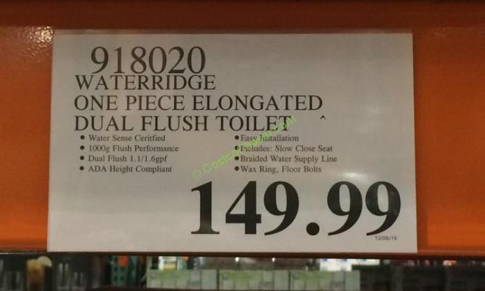Waterridge One Piece Elongated Dual Flush Toilet