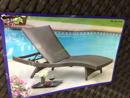 Padded Woven Chaise Lounge With Wheels Costcochaser