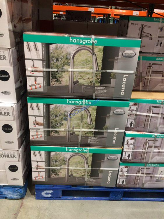 Hansgrohe Lacuna Pull Down Kitchen Faucet Costcochaser