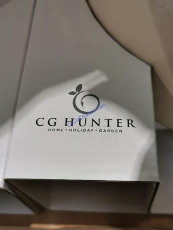 Costco-1404926-CG Hunter-Snake-Plant-name