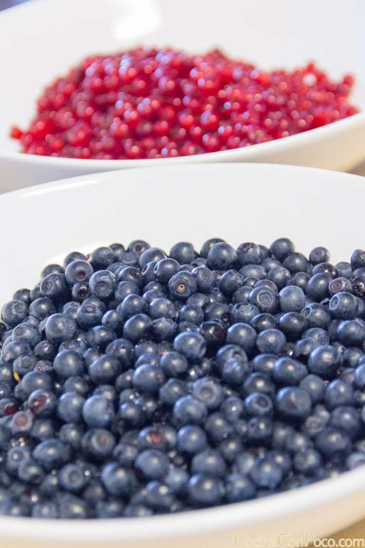 mermelada frutos rojos casera receta