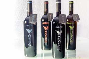 vino icono syrah cabernet merlot chardonnay