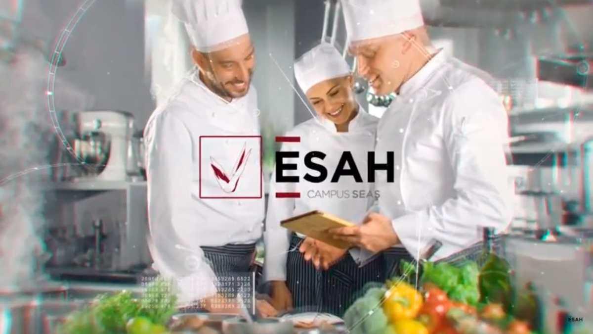 ESAH, cursos de cocina. ¡La formación profesional para impulsar tu carrera como cocinero!
