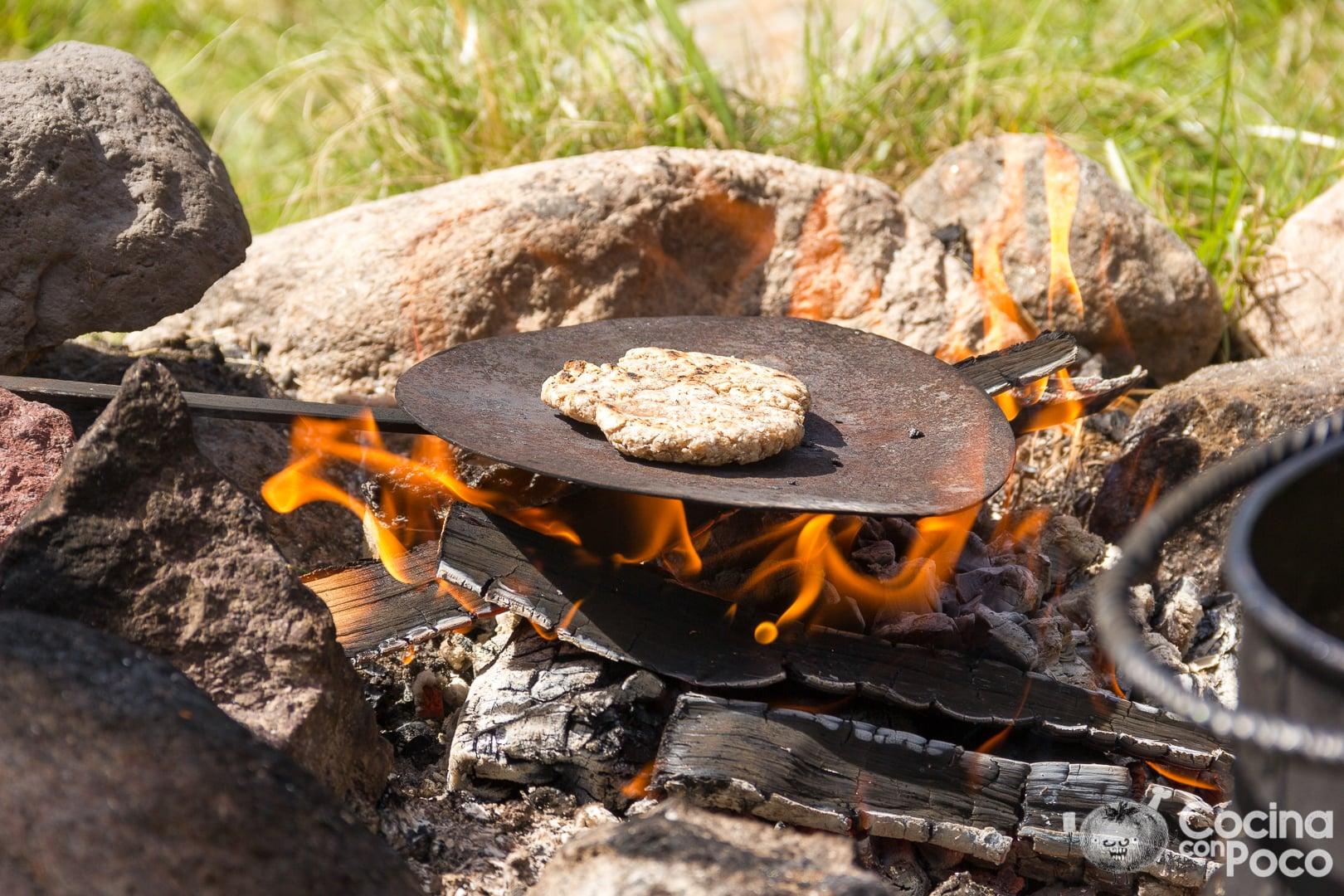 Ahumador Weber para barbacoa de gas - cómo utilizarlo, instrucciones, trucos y consejos