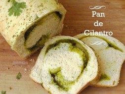 Pan de Cilantro: cómo hacer un pan de molde diferente