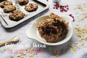 Galletas de Avena Veganas. Sin Lácteos y Sin Huevo [Receta+ Vídeo]