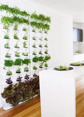 Ideas apara hacer un sencillo e increíble mini huerto en la cocina ...