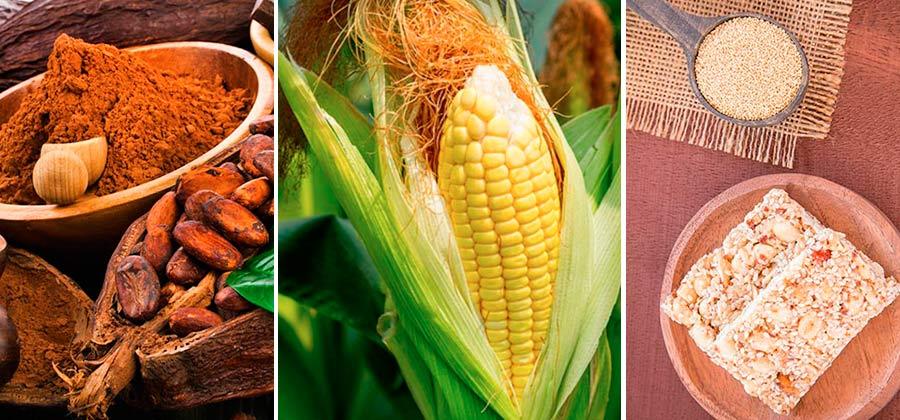 10 alimentos prehispnicos que se consumen en la actualidad  Cocina Vital