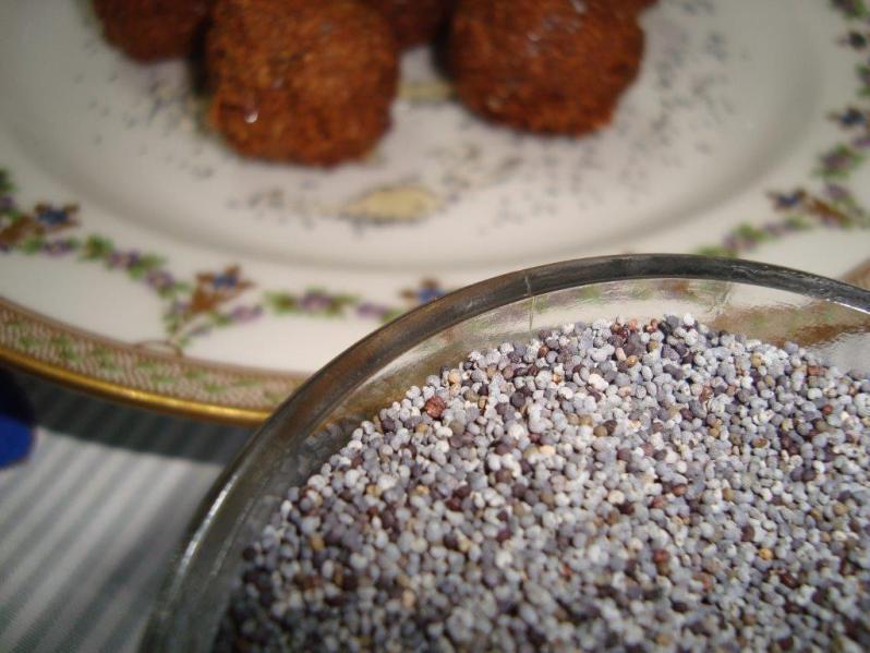 Estrenando  Blog: Cocina y letras …