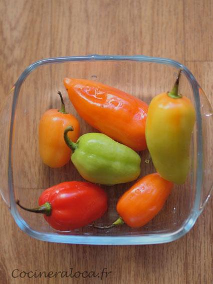 piment végétarien ©cocineraloca.fr