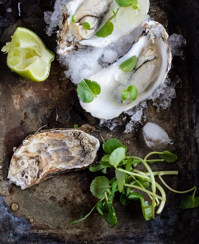 oysters with lime and watercress granita