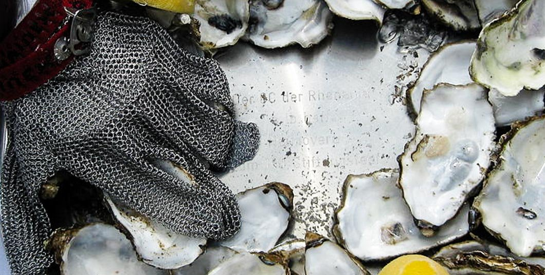 chainmail oyster shucking gloves
