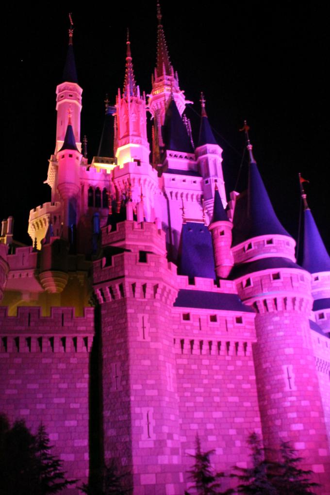 Cocktails in Teacups Walt Disney World Day 3 Make it Pink