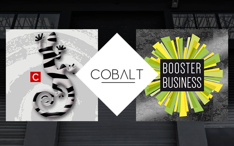 espace Cobalt - Booster business - COCO and Co